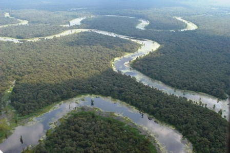 Aerial view of the Sulphur River Wildlife Management Area in Southwest Arkansas.