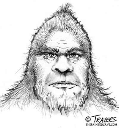 Sketch by Pete Travers of a wood ape seen in 1989 near Jefferson, Texas.